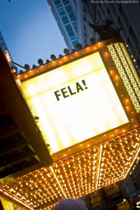 Do Yourself a Favor. Go See Fela!