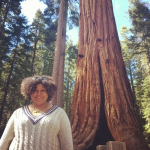 Come With Me, To Yosemite! My Amazing Lumia Explorers Experience