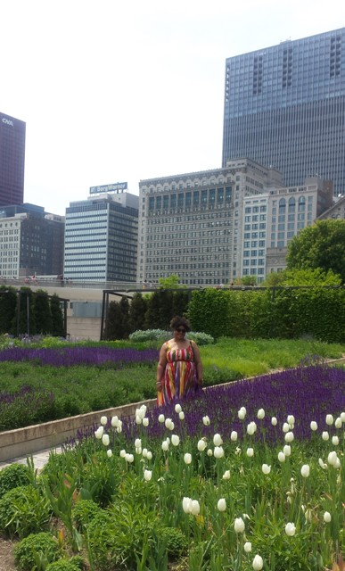 I'm in Lurie Garden, steps outside of Chicago's Millennium Park. So beautiful at this time of year!