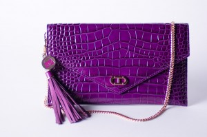 Make Your Purse A Symbol To End Domestic Violence and Financial Abuse